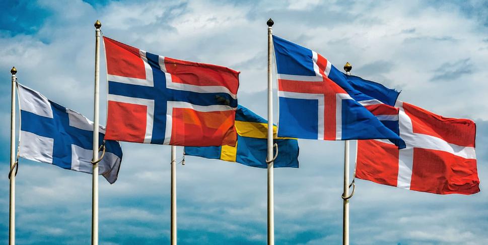 2019 Bucci Nordic